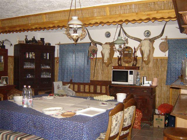 Huszti farm -Tarpa