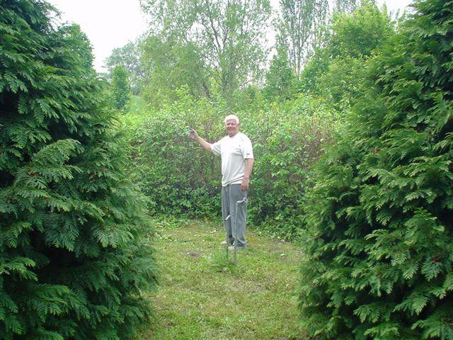2011. madarak és fák napja – Szanazug, Univerzál üdülő
